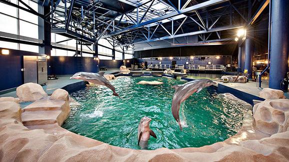 Georgia Aquarium Insul Con